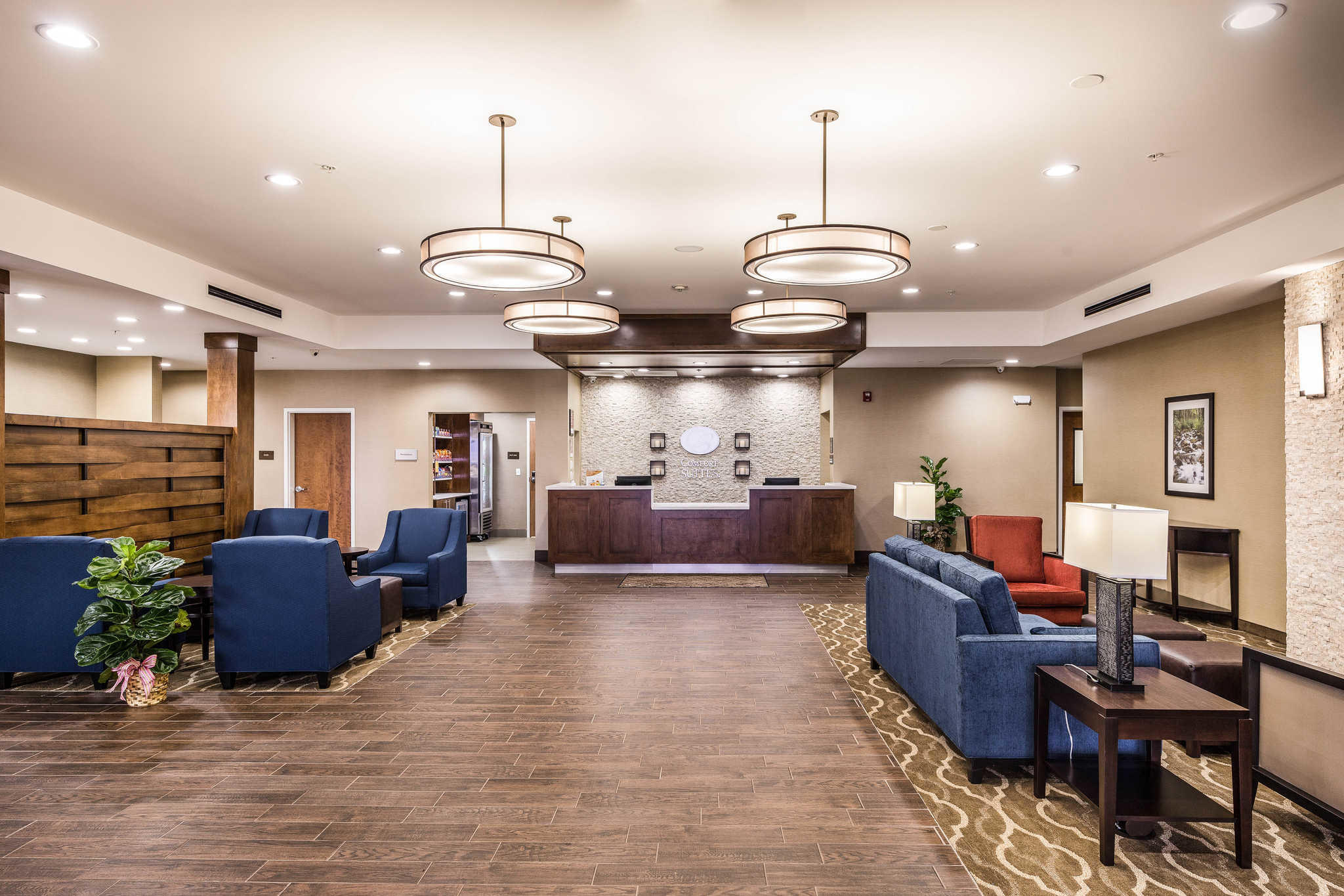 Comfort Suites Greenville South image 4