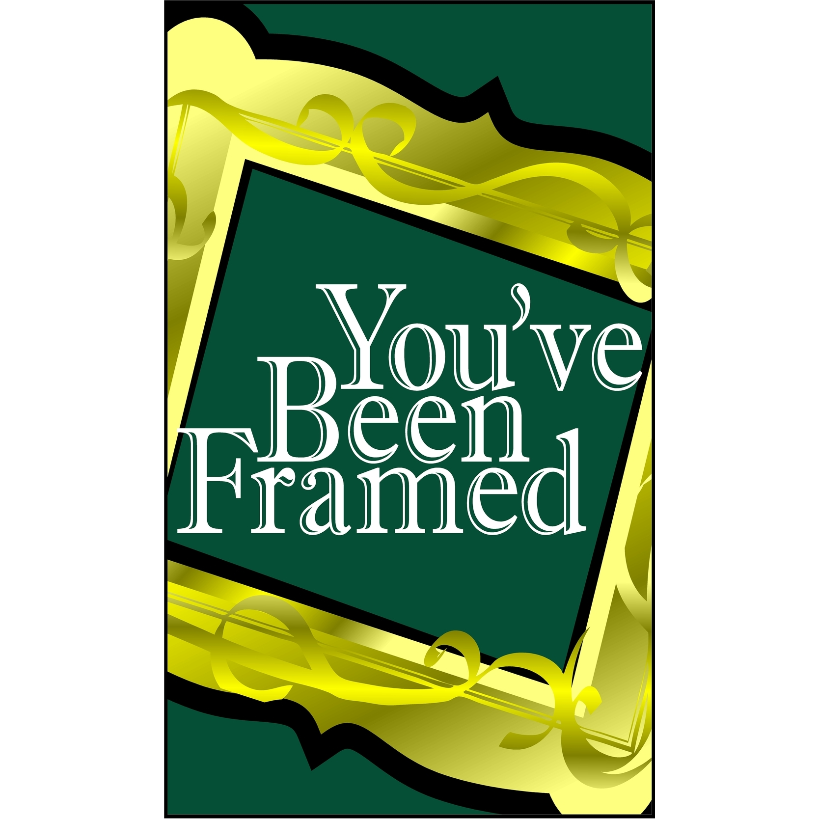 image of the You've Been Framed