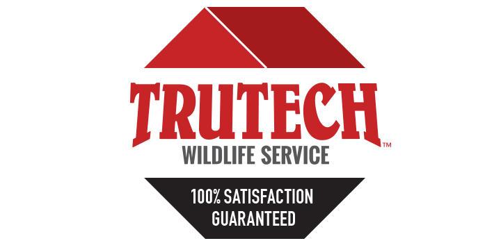 Trutech Wildlife Service image 4