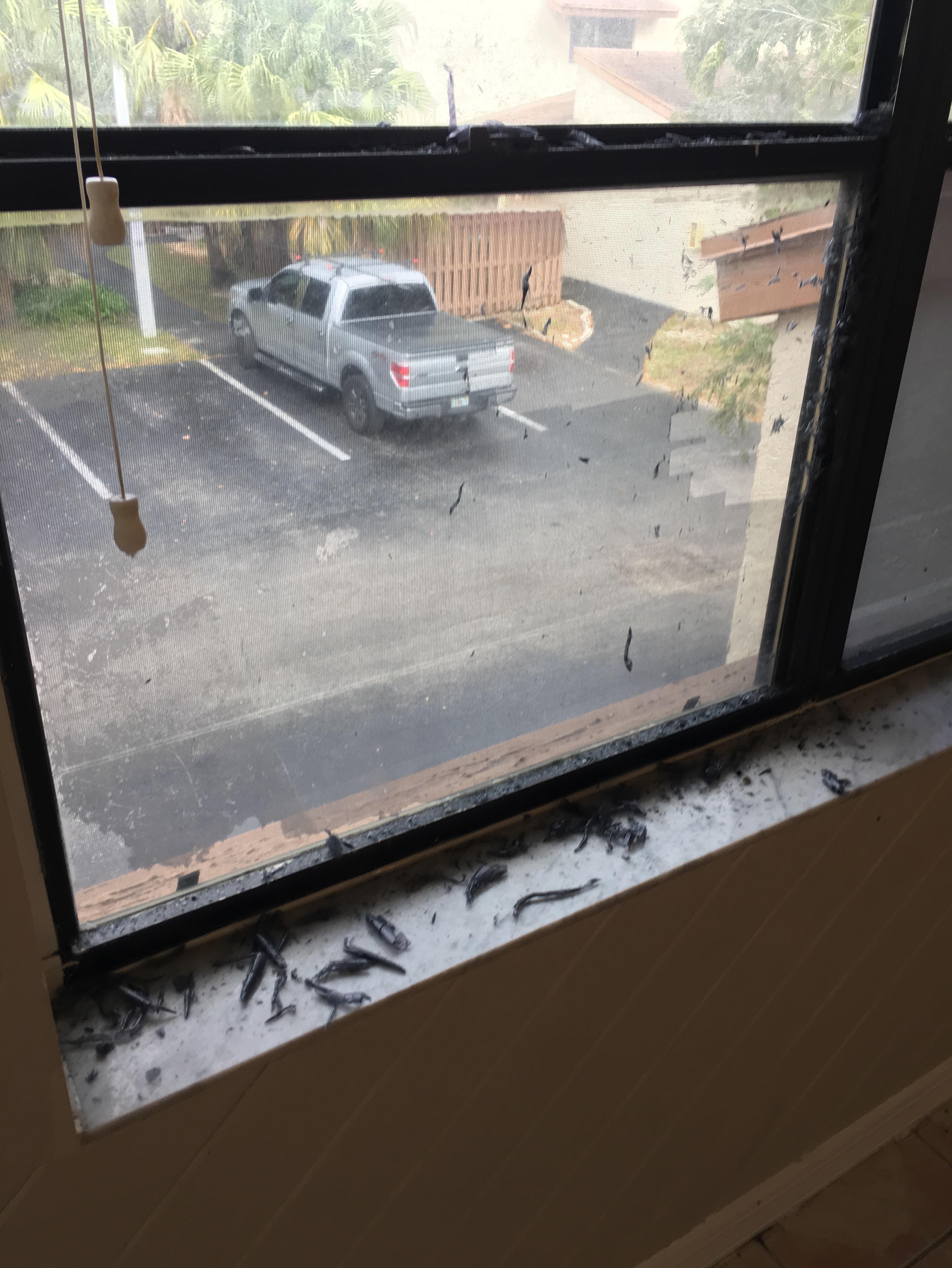 Florida Impact Door & Window image 42