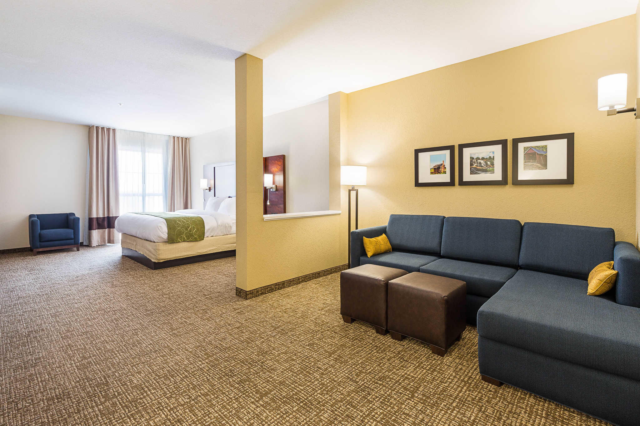 Comfort Suites Greenville South image 17