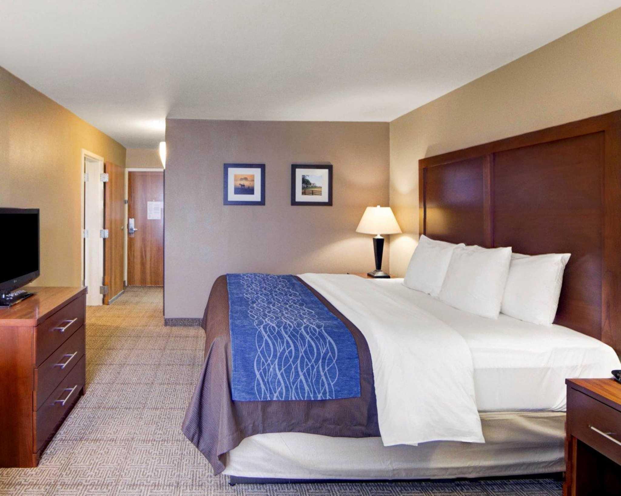 Comfort Inn & Suites Plano East image 5