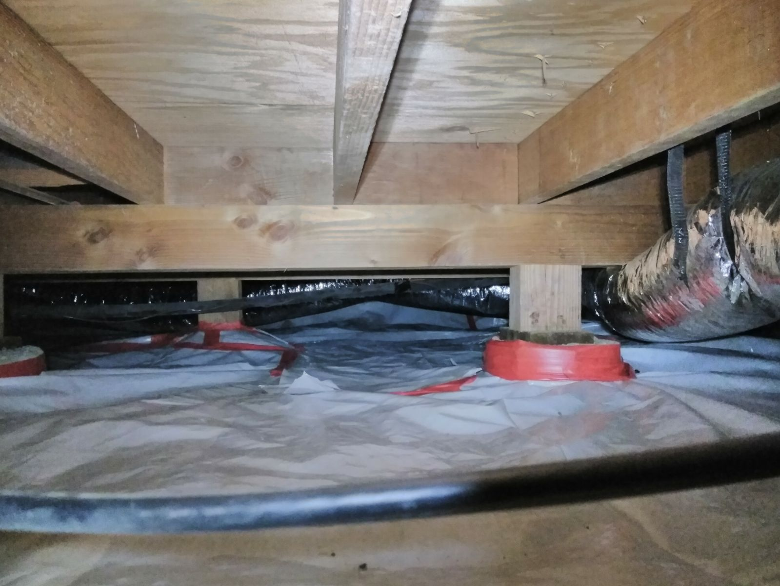 Rodent Solutions Pro - Rodent Proofing | Attic Insulation Removal Oakland, CA image 11