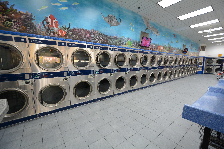 World Laundry image 6