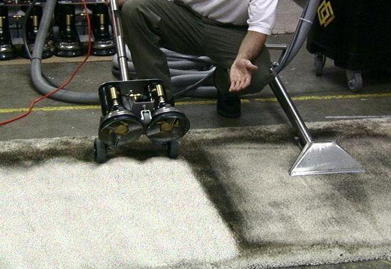 Potter's Carpet Cleaning image 1