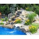 Top Seed Landscape Design Inc image 12