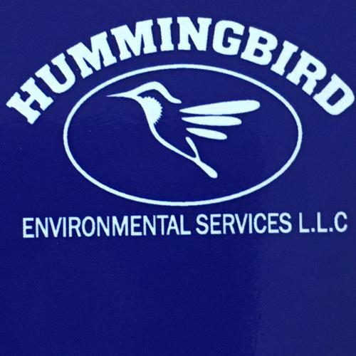 Hummingbird Environmental image 0