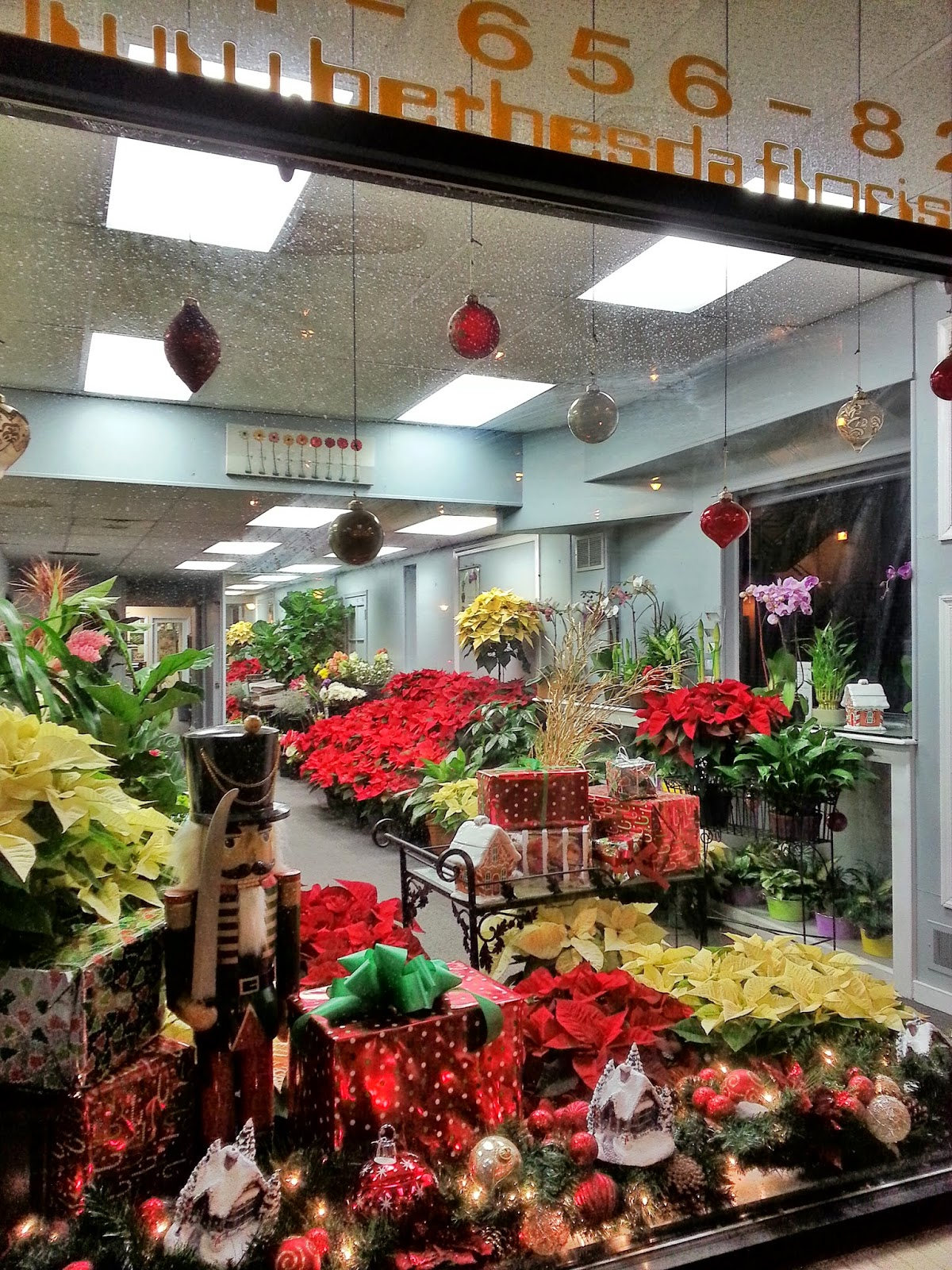 Bethesda Florist image 0