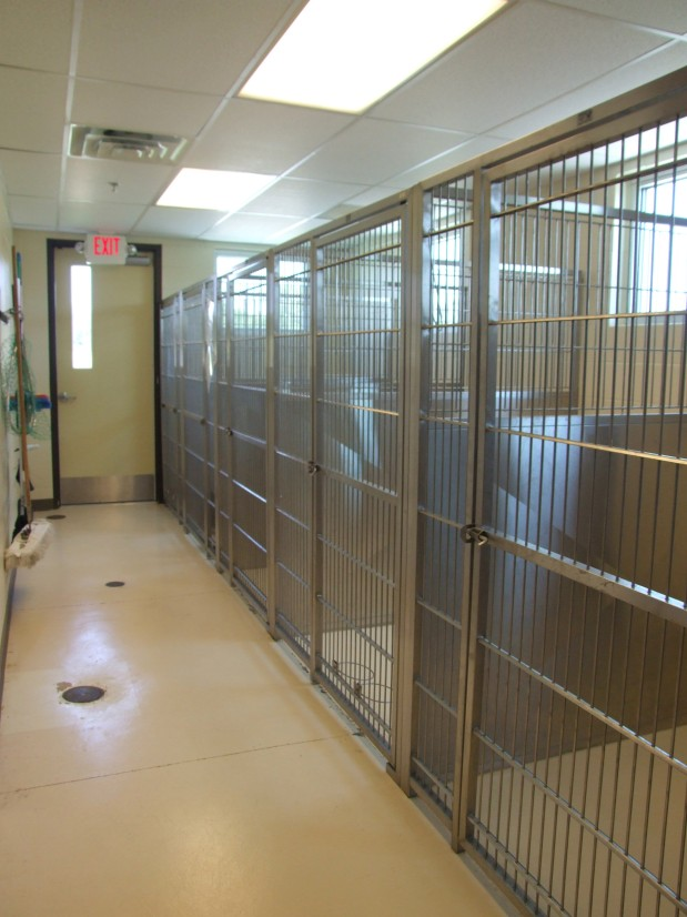 Pet Medical Center image 2