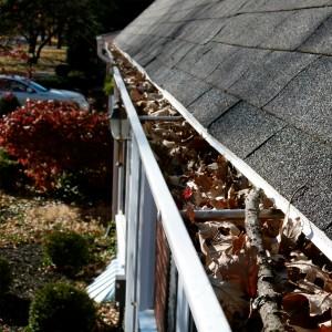Lakewood Window Cleaning image 3