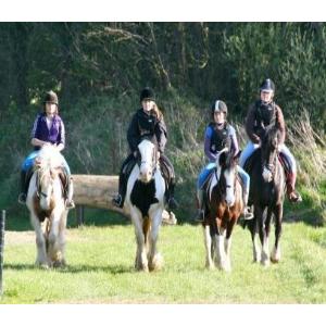 Dunany Equestrian Centre