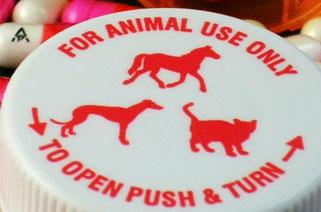 Animal Medical Center image 1