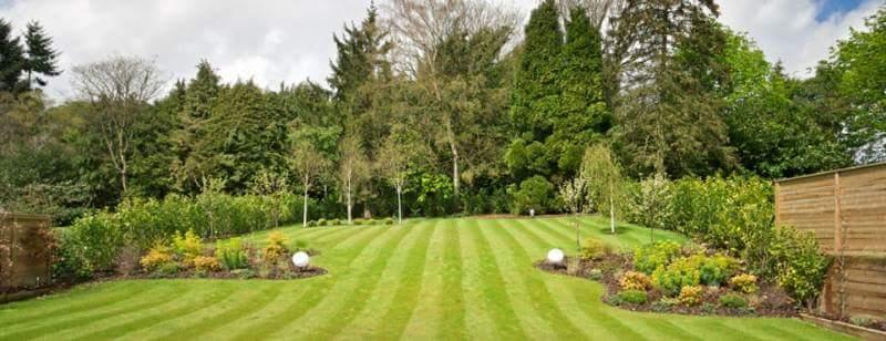 how to grow your lawn care business