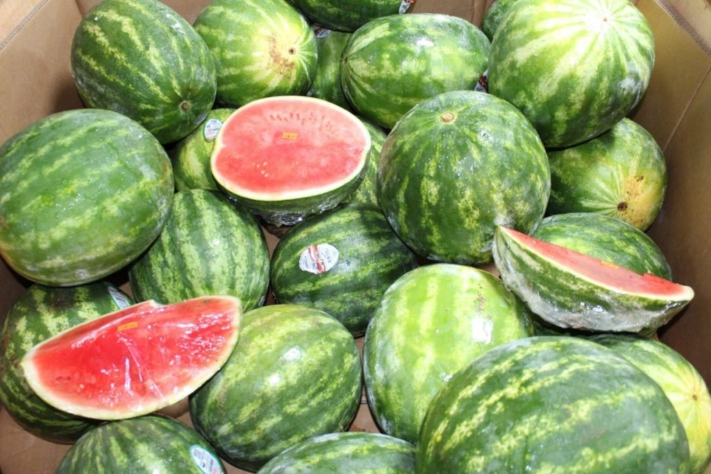 Kissel Hill Fruit Farm image 9
