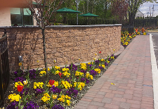 Kelly's Landscaping image 8