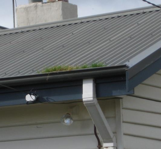 Scott Miller General Contracting and Seamless Gutter image 2