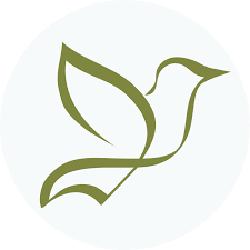 Meadowlark Family Dentistry - Kelso