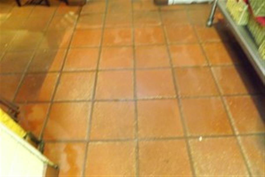 Lubbock Carpet Cleaning Service image 3