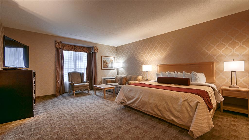 Best Western Little River Inn in Simcoe: King Business Guest Room