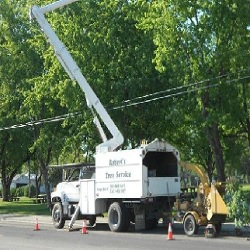 Roberts Tree Service - Grangeville, ID 83530 - (208)983-3627 | ShowMeLocal.com