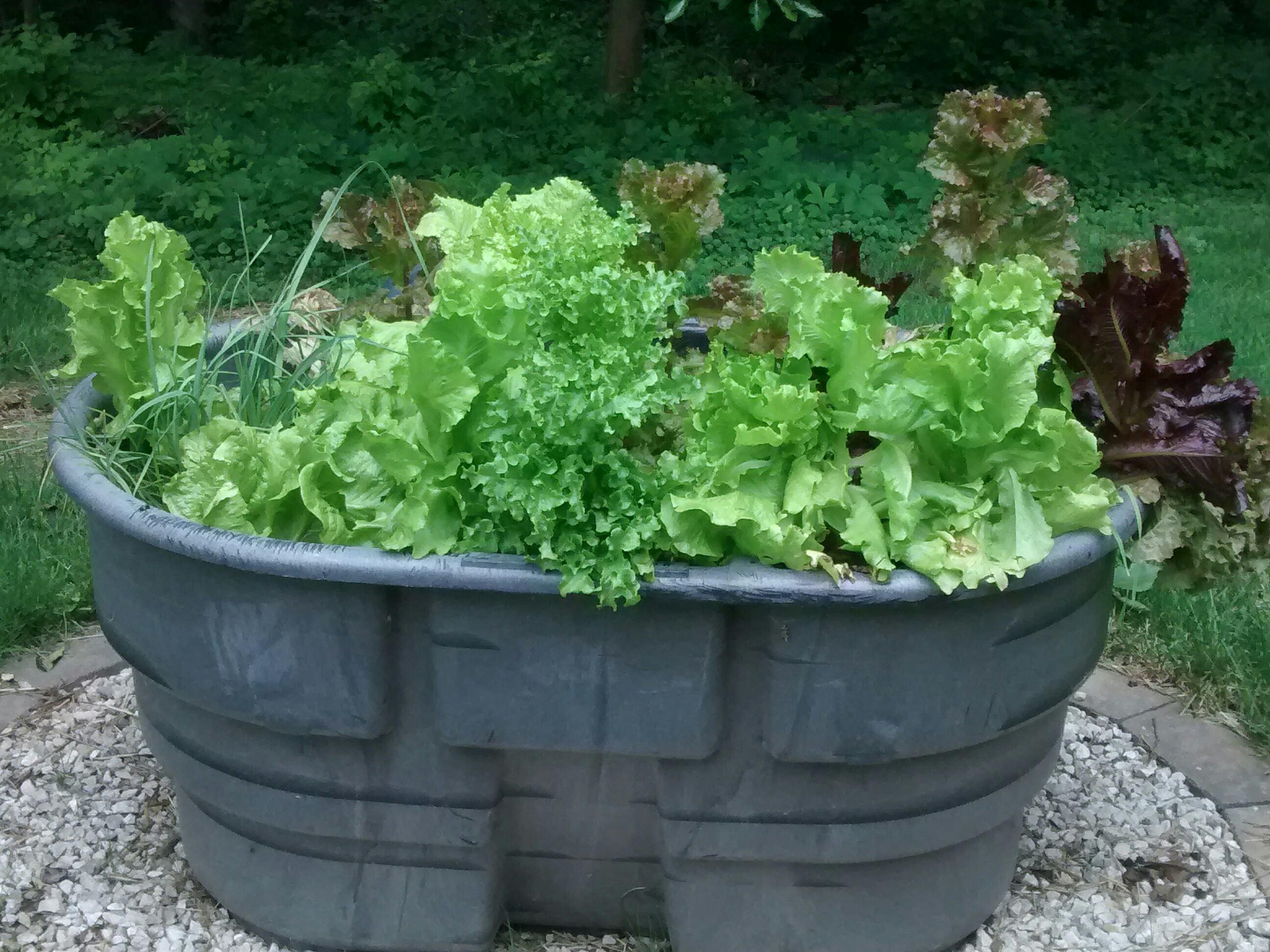 Sower's Harvest, LLC. image 2