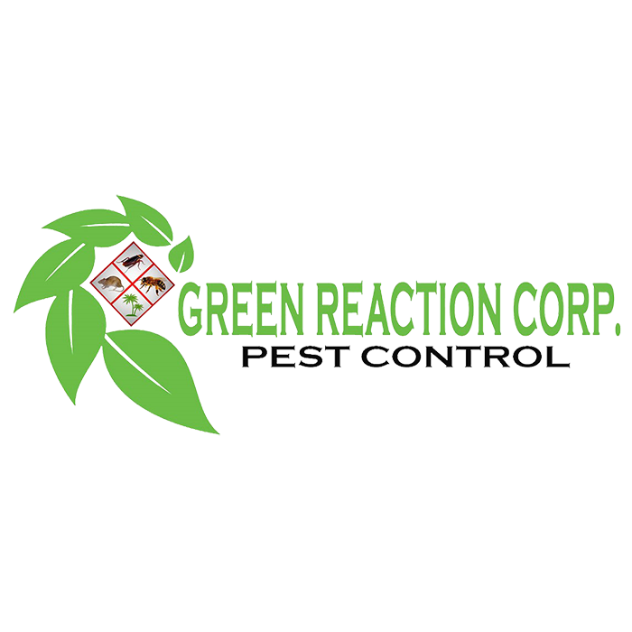 Green Reaction Corp.