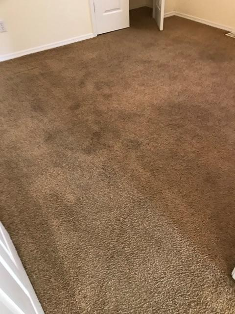 Keep It Clean has been setting the standard for the carpet cleaning industry in the Decatur area for years. We appreciate the opportunity to add you to our long list of satisfied customers. Our green products and truck mounted equipment is sure to get your carpet clean. Give us a call today. We look forward to serving you!