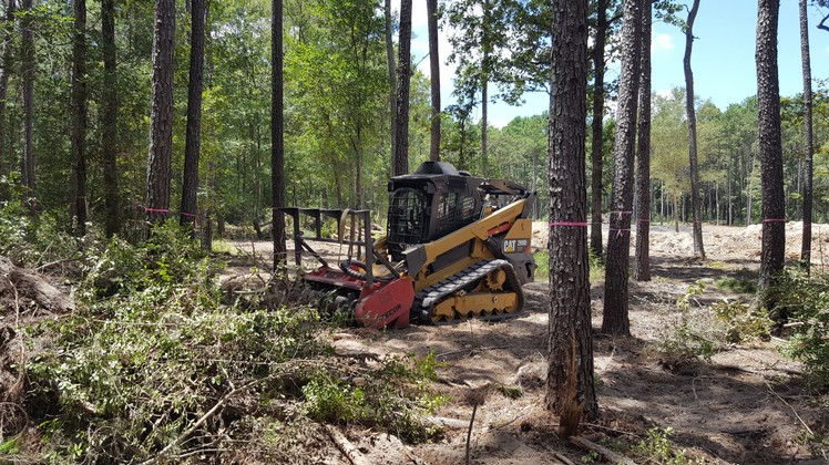 Texas Ace Land Clearing   Land Clearing Houston image 19