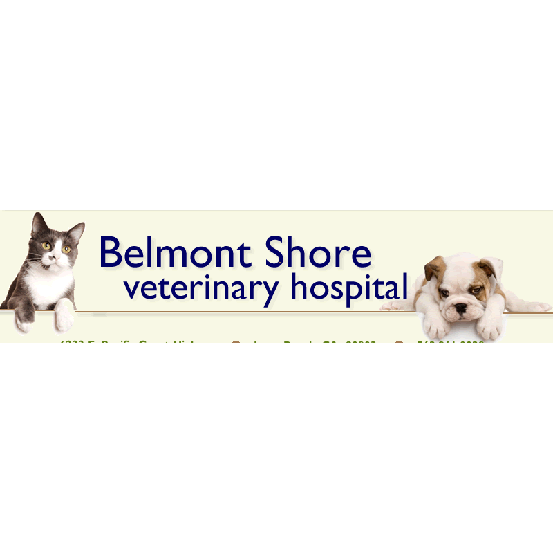 Broadway Pet Clinic Long Beach Ca