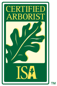 Flintridge Tree Care image 4