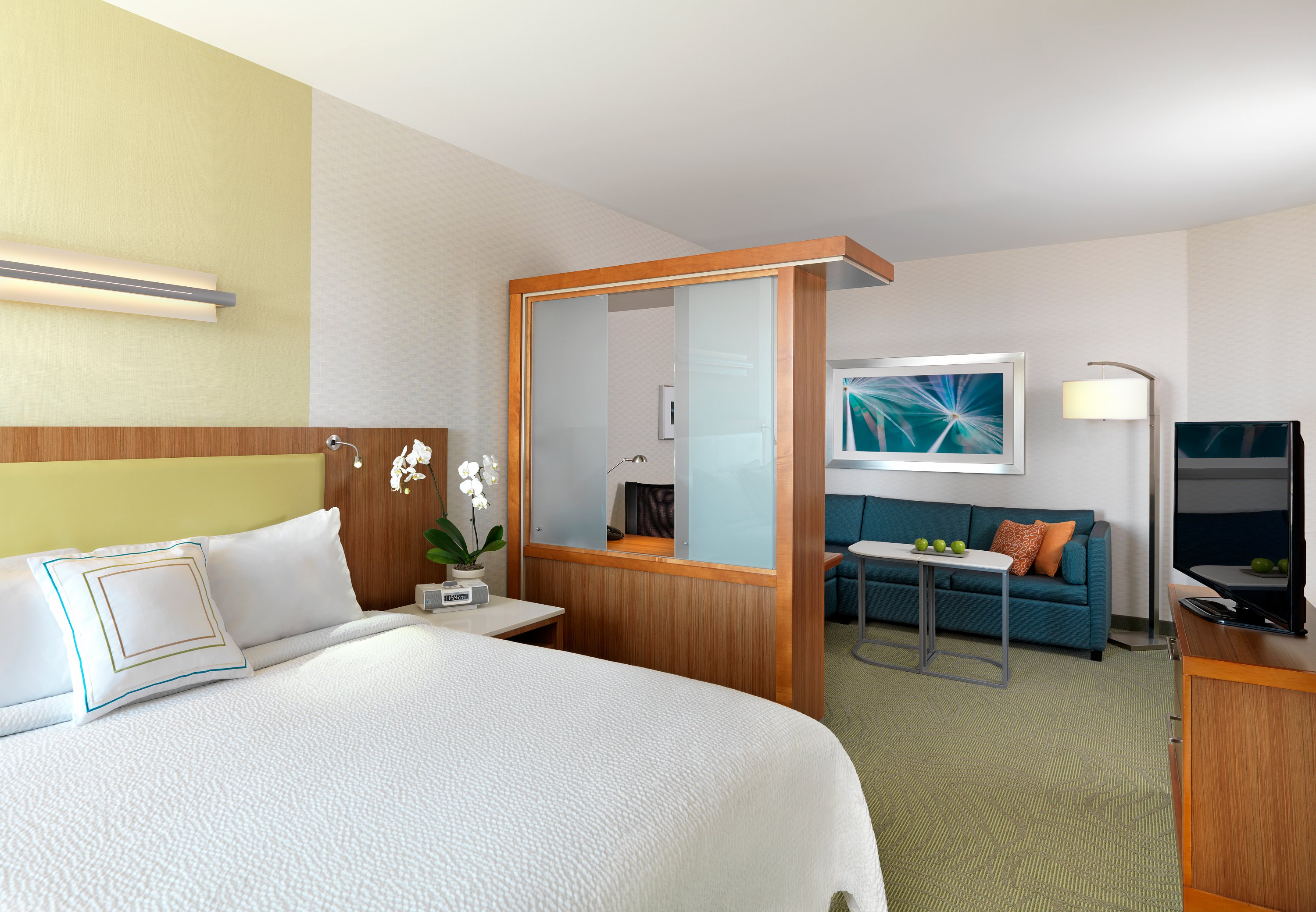SpringHill Suites by Marriott Denver Tech Center image 4