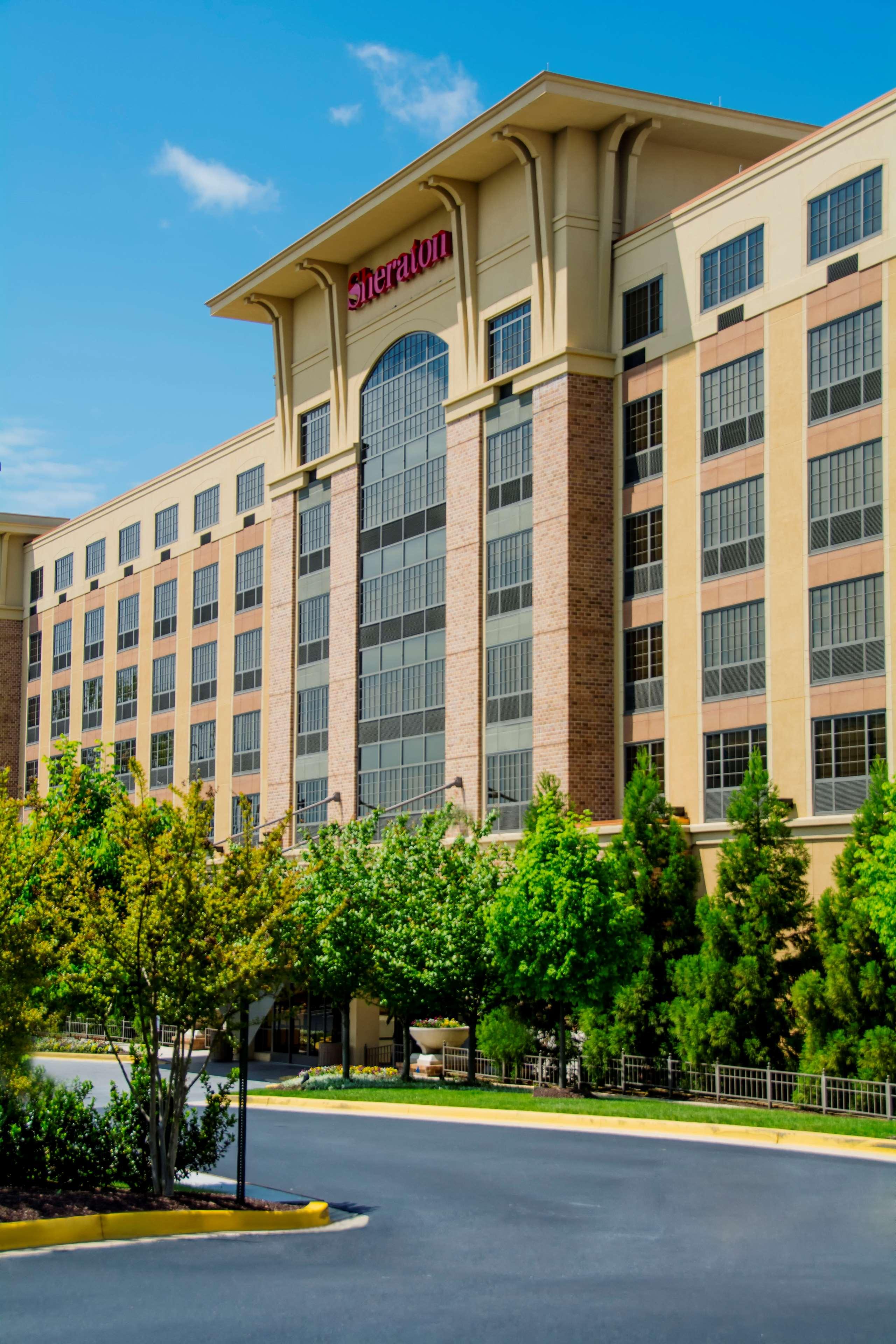 Sheraton Baltimore Washington Airport Hotel Bwi 1100