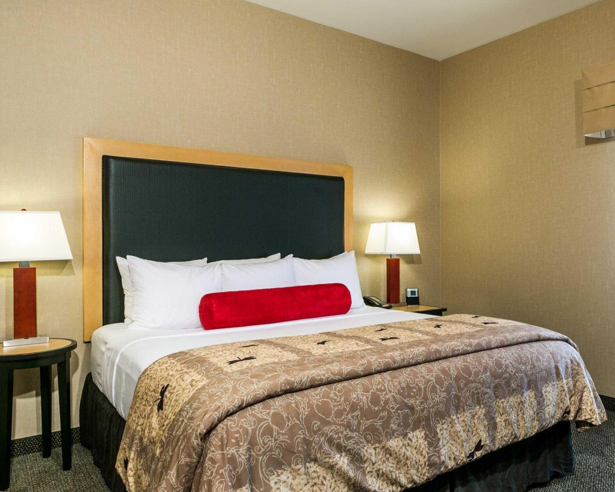 Cambria Hotel Denver International Airport image 1
