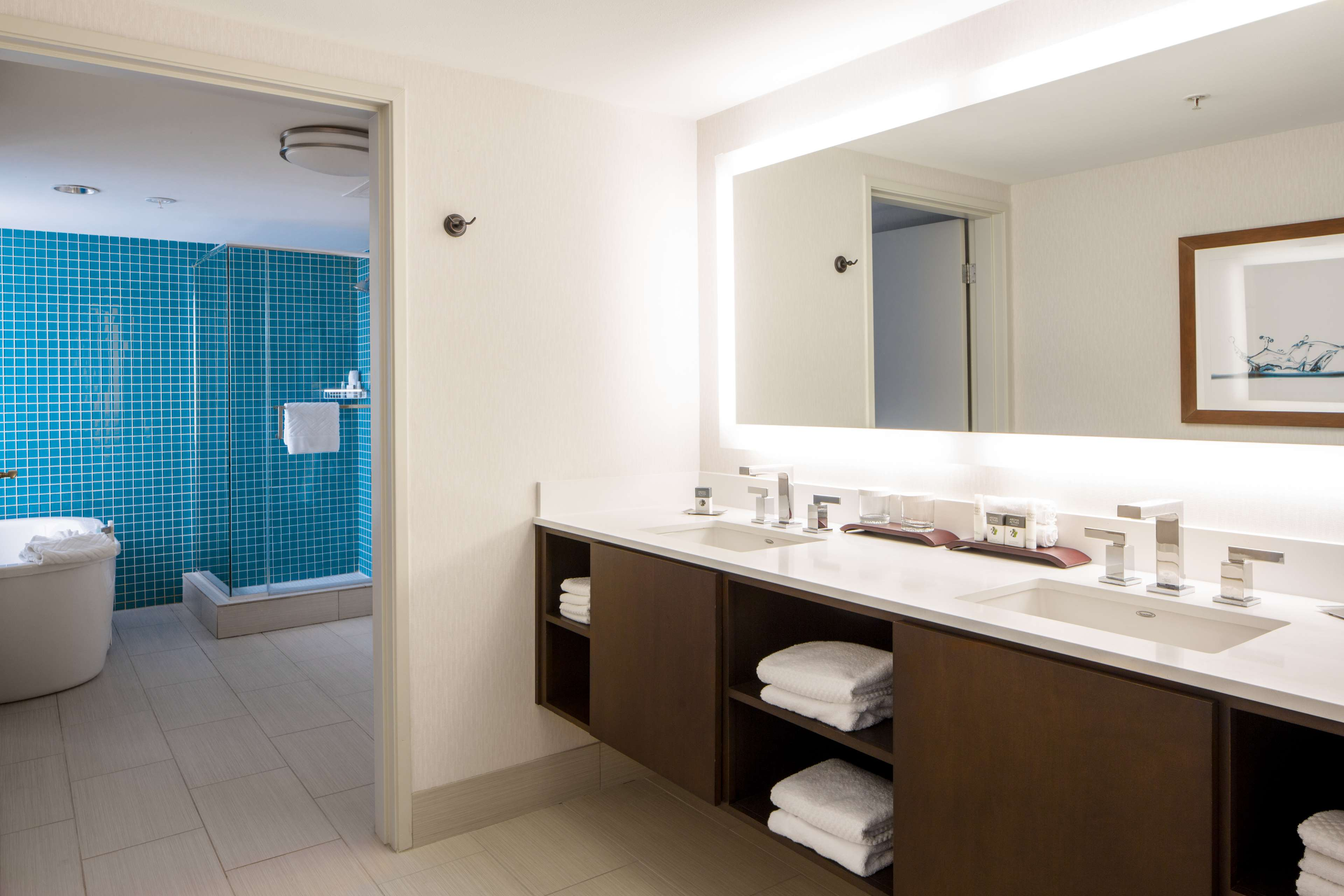 DoubleTree Suites by Hilton Hotel Doheny Beach - Dana Point image 19