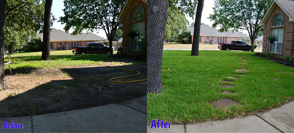 Purple Care (formerly Xtreme Lawn Care)