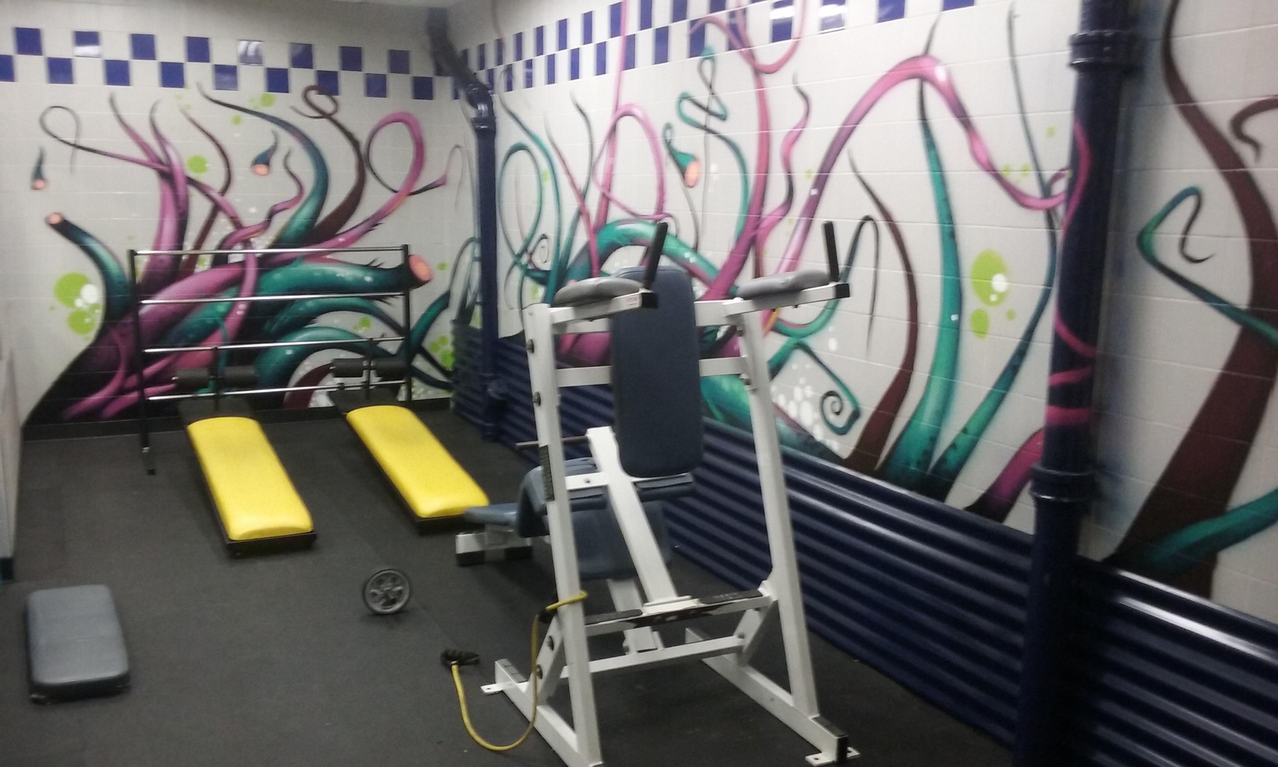 Everybodies Gym image 5