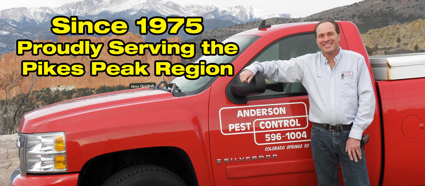 Anderson Pest Control image 0
