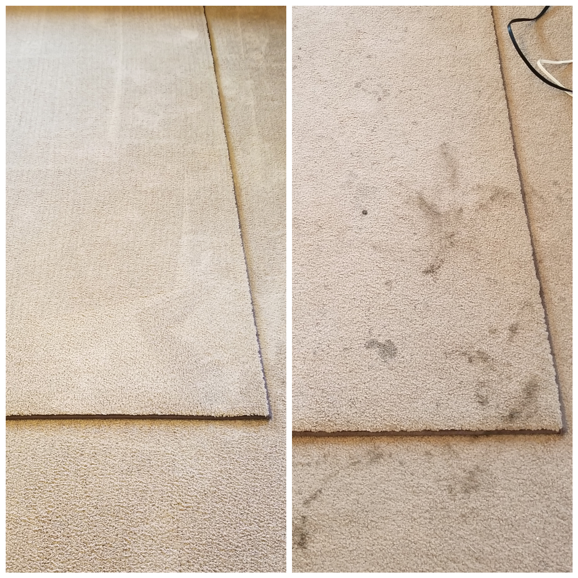 Kelly's Carpet Cleaning and Flood Restoration image 0