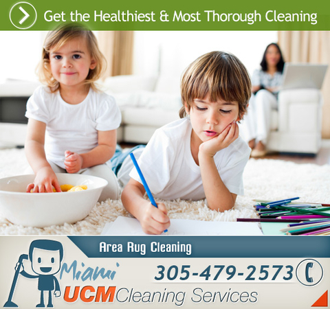 Cleaning services miami fl - Houston