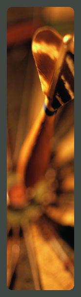 L.I.C.R.A. - Nashville image 1