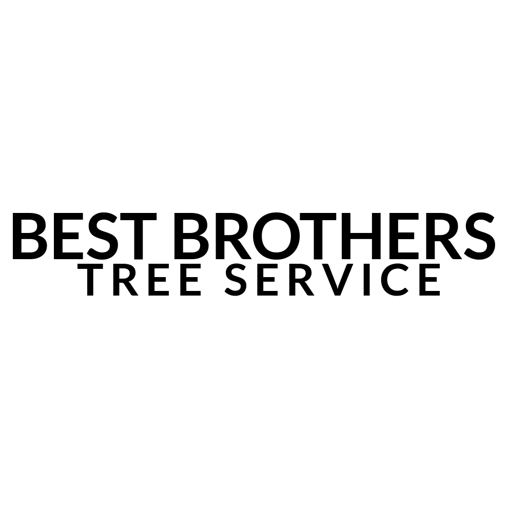 Best Brothers Tree Service