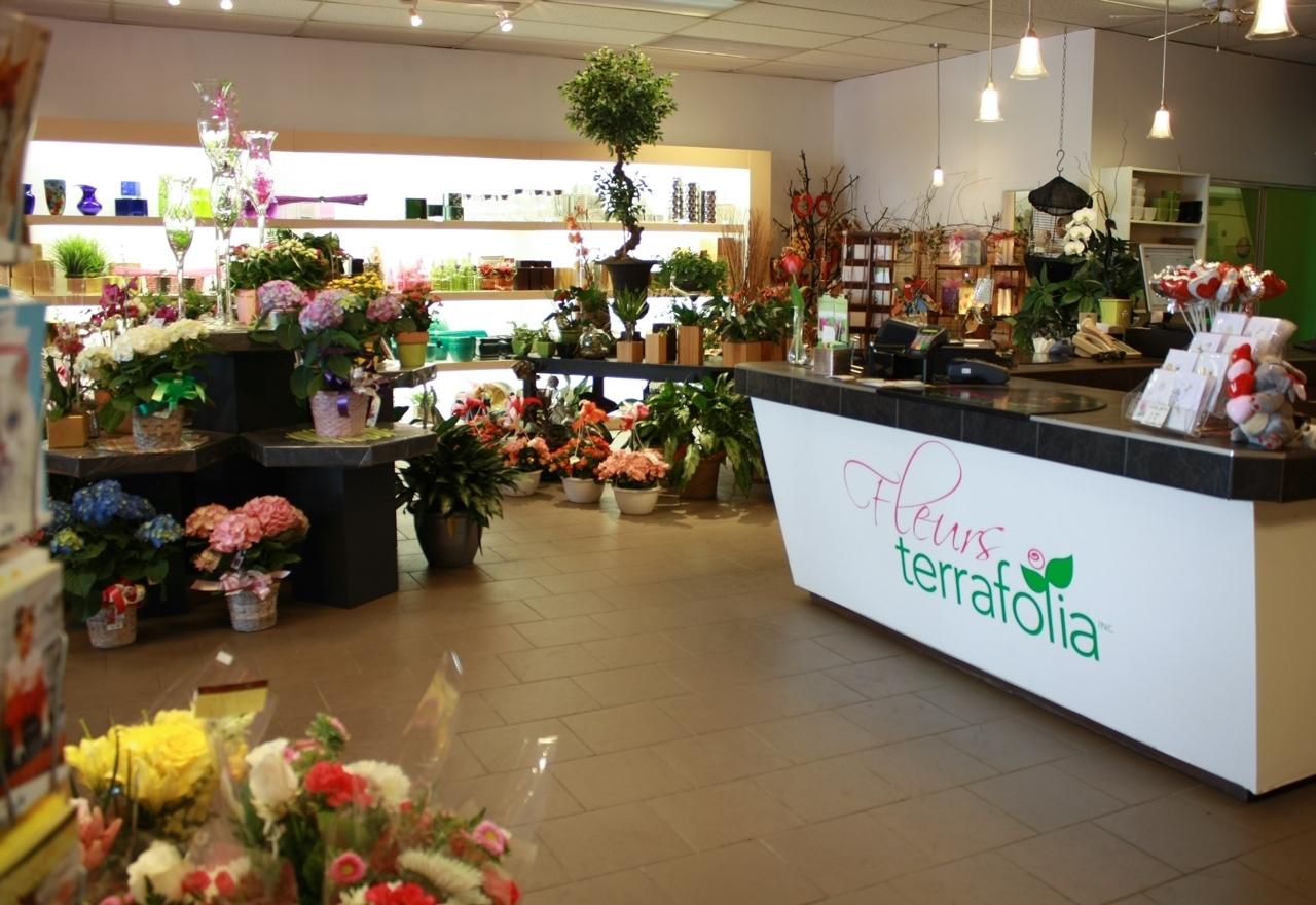 Terrafolia Inc à Dollard-des-Ormeaux