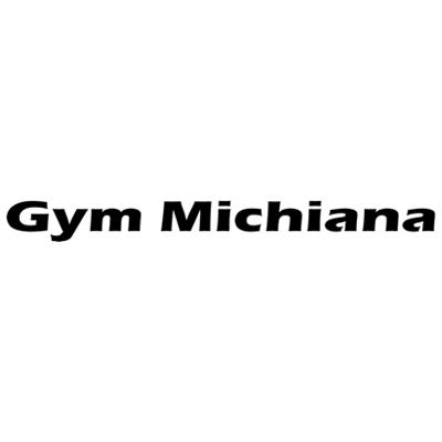 Gymnastics Michiana