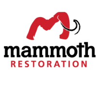 Mammoth Restoration & Cleaning