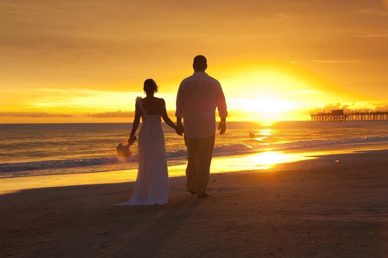 DoubleTree Beach Resort by Hilton Hotel Tampa Bay - North Redington Beach image 22