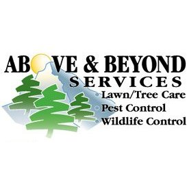 Above And Beyond Services