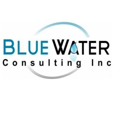 Blue Water Consulting Inc
