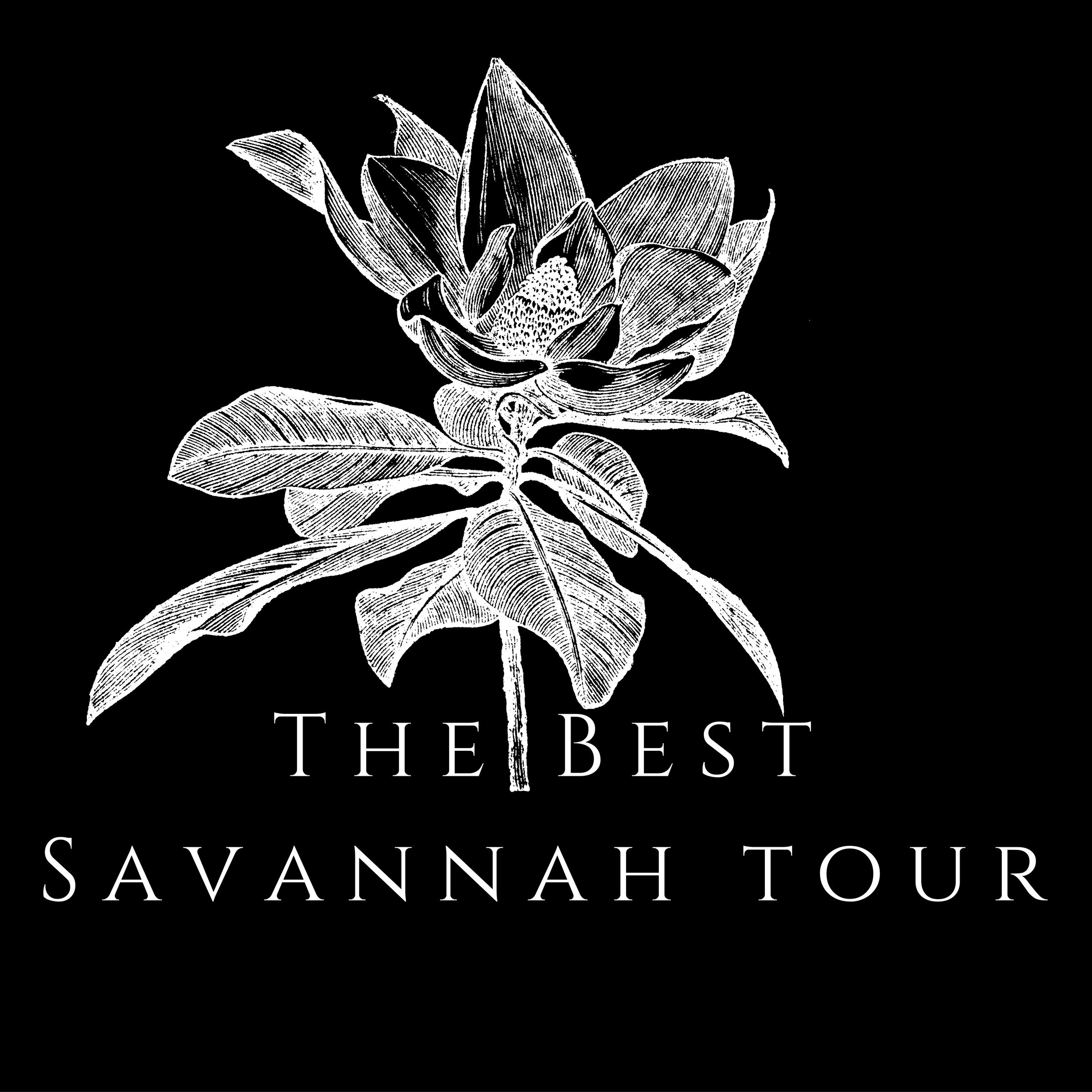 The Best Savannah Tour Company | Historic & Ghost Walking Tours
