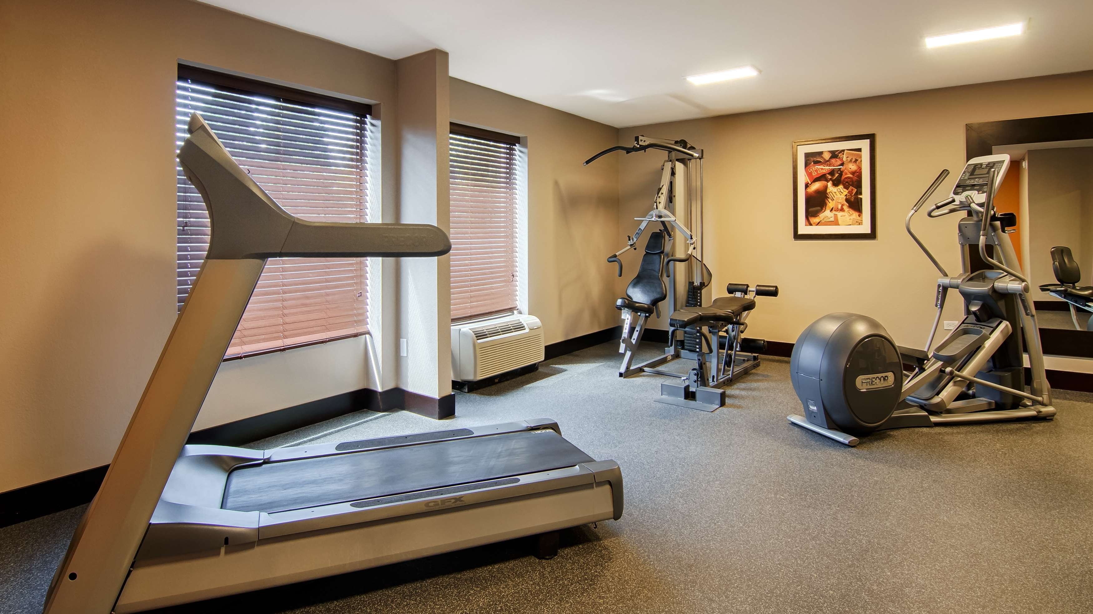 Best Western Plus Chicagoland - Countryside image 36