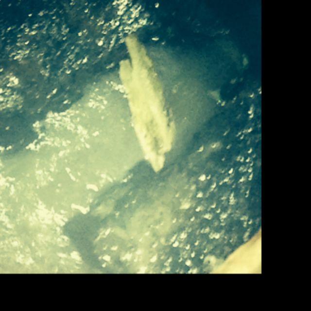 Elite Plumbing Septic & Sewer image 5